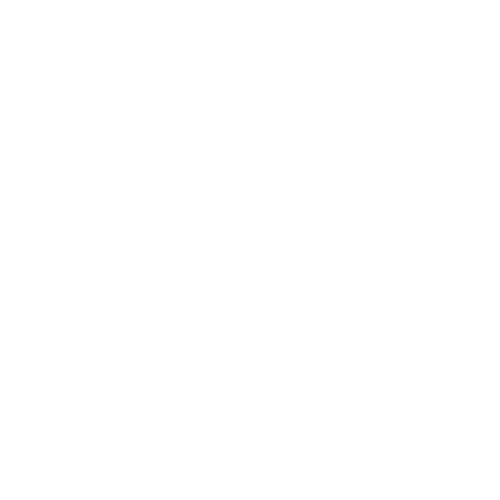 AIS w